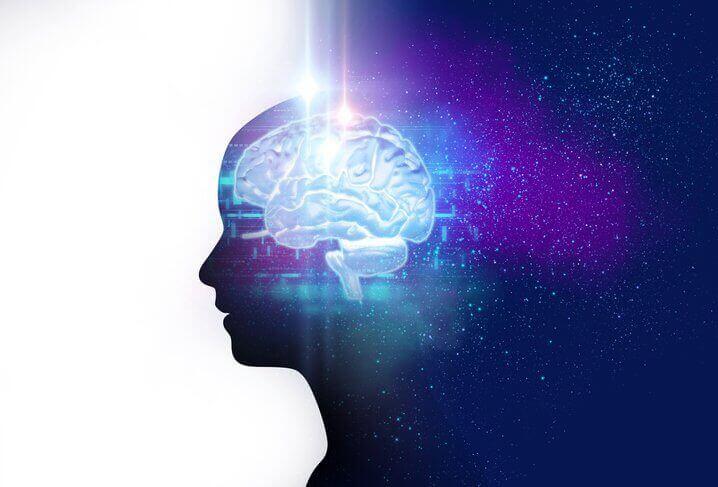 Brain and working memory