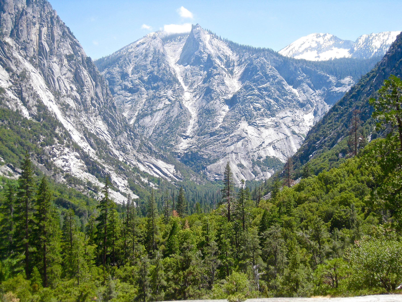 Kings Canyon overlook.jpg